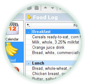 Circle SnapShot of Food Log Screen on Windows Vista